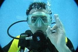 Journées d'immersion